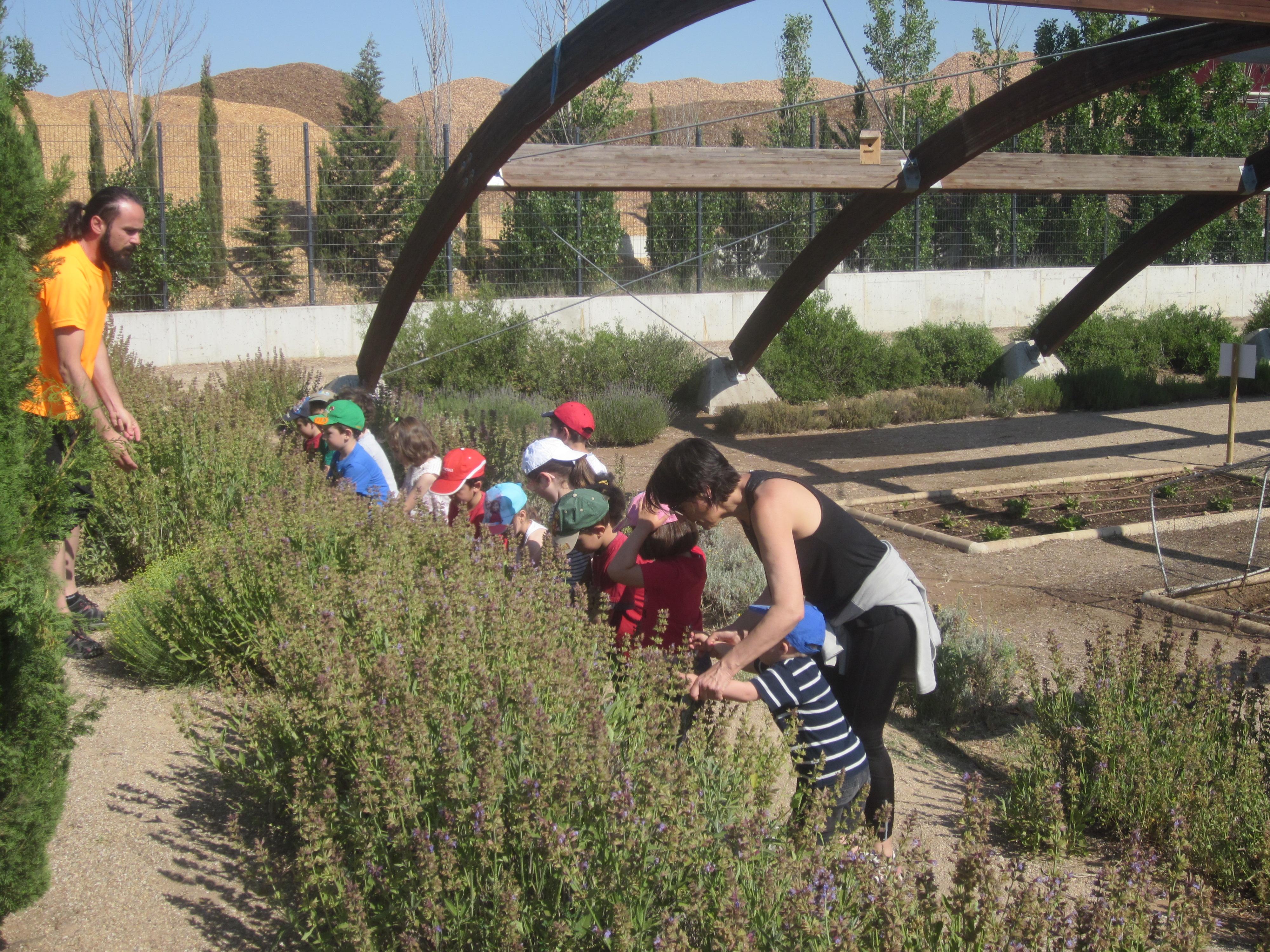 Escolares Parque Ambiental