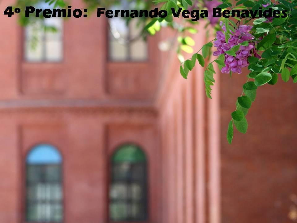 4º Premio:  Fernando Vega Benavides