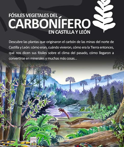 Cartel anunciador de la exposición: Fósiles Vegetales del Carbonífero en Castilla y León