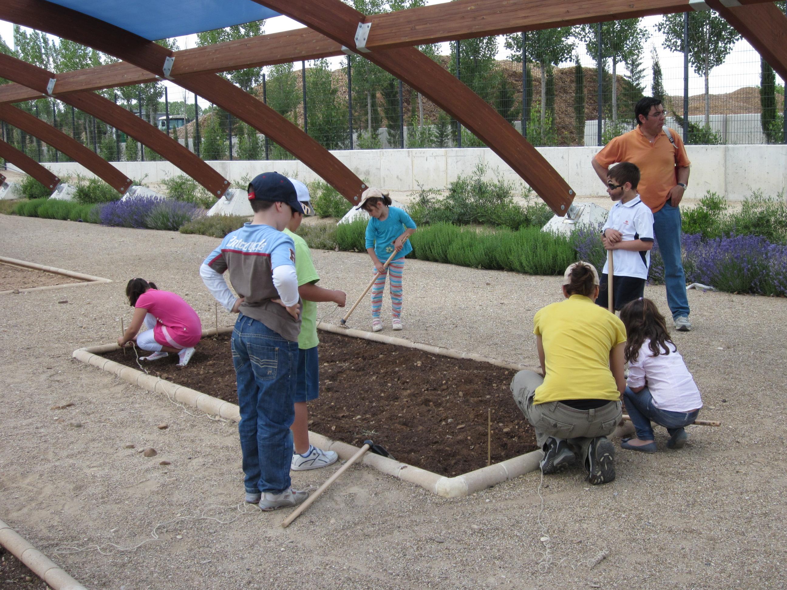 Los huertos educativos se llenan de vida gracias a los participantes