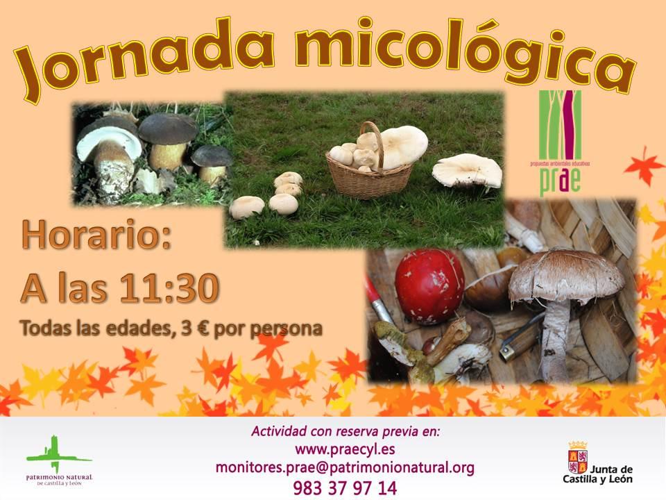 Jornada micológica