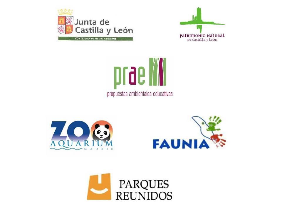 Los diferentes organizadores que participan