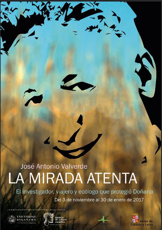La mirada atenta: José Antonio Valverde, el investigador, viajero y ecólogo que protegió Doñana