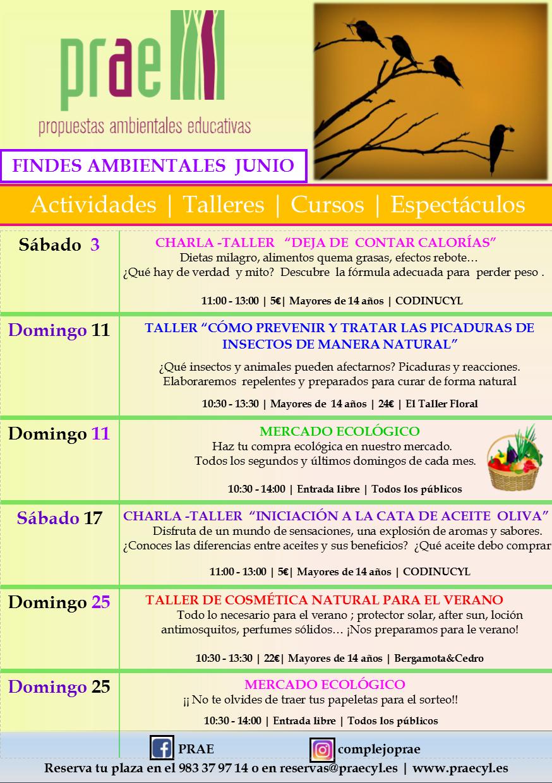 FINDES AMBIENTALES JUNIO