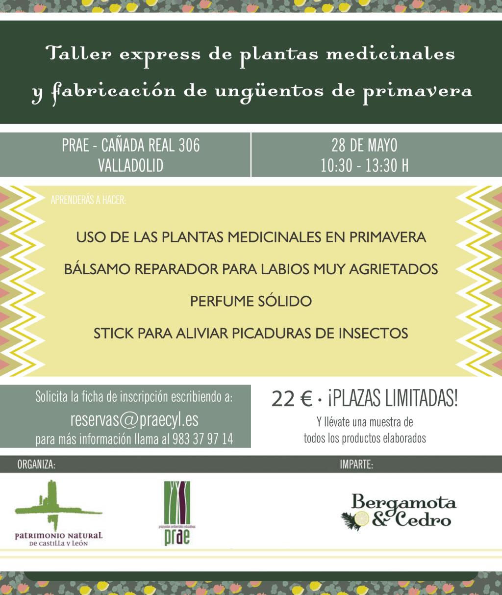 TALLER DE PLANTAS MEDICINALES Y FABRICACIÓN DE UNGÜENTOS