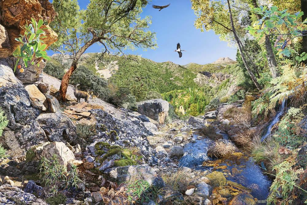 Vida y diversidad: espacios naturales, espacios ilustrados: Parque Natural Las Batuecas - Sierra de Francia (Salamanca)