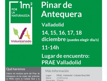 Voluntariado Ambiental en el PRAE