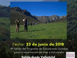 Observación de aves y mariposas en los Picos de Europa