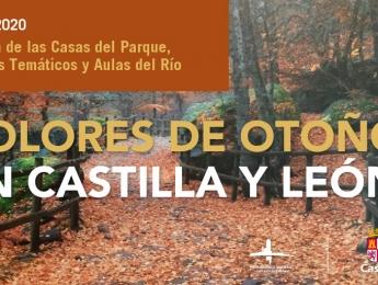 Boletín de las Casas del Parque, Centros Temáticos y Aulas del Río