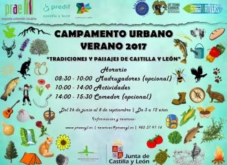 Campamentos Verano 2017 (3 a 6 años)