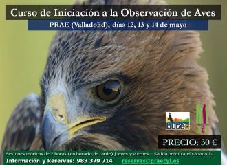 Iniciación a la observación de aves
