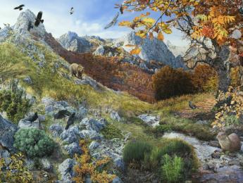 """La exposición """"Vida y diversidad, espacios naturales, espacios ilustrados"""