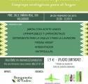 Productos ecológicos bergamota y cedro